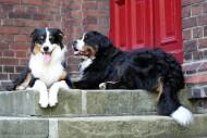 Shila & Leni