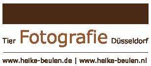 Tierfotografie Düsseldorf | Heike Beulen